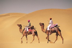 Two men on camelback in desert, Jaiselmer, India546003